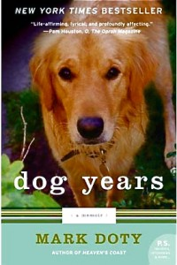 dogyears