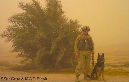 militaryworkingdog