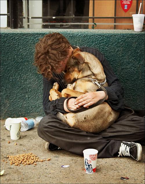 homeless_sleeping_dog1.jpg