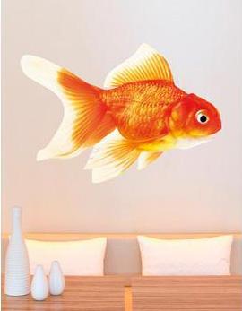 goldfishwallsticker.jpg