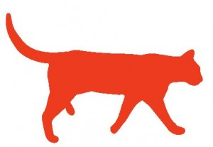 coralcat