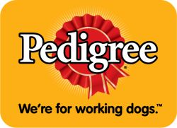 marketing project for pedigree pet food Shop chewy for the best pet supplies ranging from pet food, toys and treats to litter, aquariums, and pet supplements plus so much more if you have a pet-or soon will-you've come to the right place.