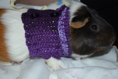 2 or Single Guinea Pig Sweaters Guinea Pig Jumper Hand knitted in 2 Tone Pink and Plain Pink Ripple Pattern 6.5/'/' Handknitted in the UK