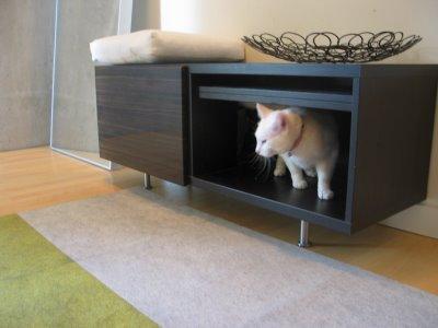 Diy 2 Hidden Entryway Cat Litter Boxes Pet Project