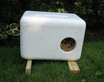 Stray cat house diy
