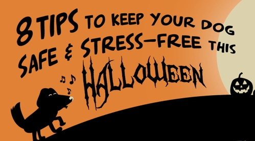 Halloweensafety copy